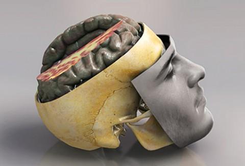 "The ""silent epidemic"" of brain injury among UK prisoners"
